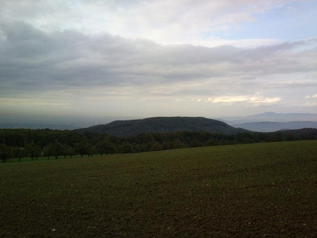 Der Blick bei Baumgarten geht übe Basel bis zum Hochblauen im Schwarzwald (und Feldberg weiter rechts nicht im Bild)