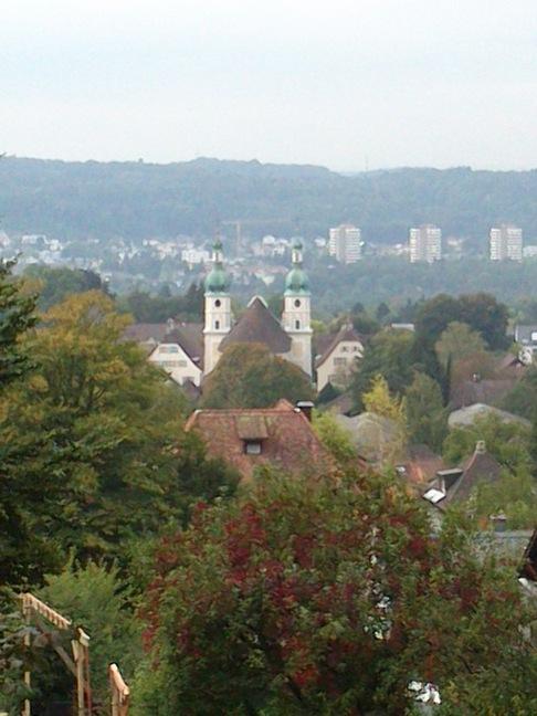 Blick über das Birstal und die Türme des Doms zu Arlesheim