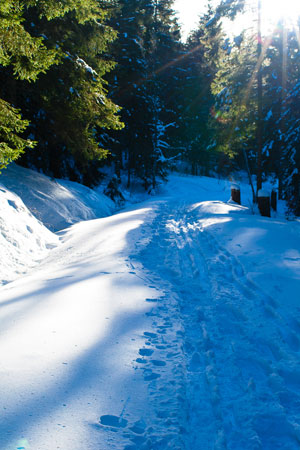 winter_strecke