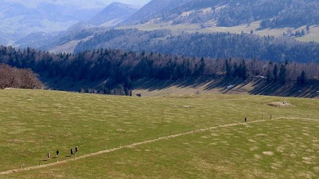 Hinunter von der Hohen Winde, kurz vor der Verpflegung auf dem Erzberg
